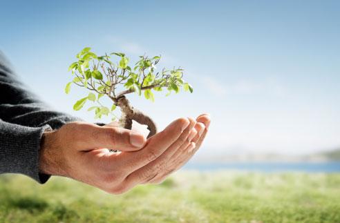Báo cáo giám sát môi trường