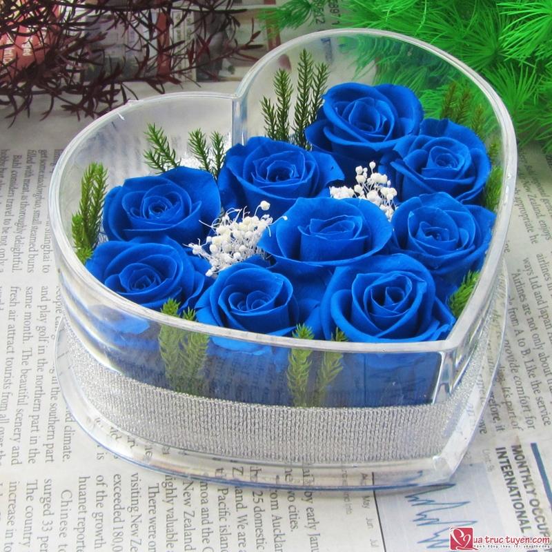 hoa xanh bat tu