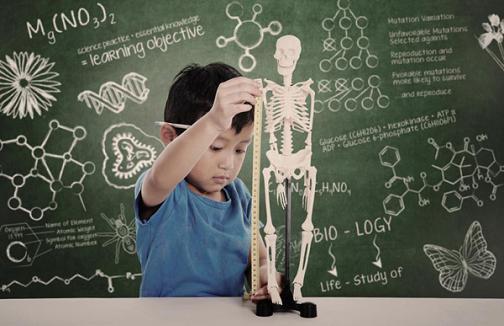 Ô nhiễm làm mất trí nhớ trẻ em