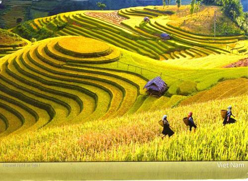 Việt Nam lọt top 10 nước du lịch giá rẻ nhất thế giới
