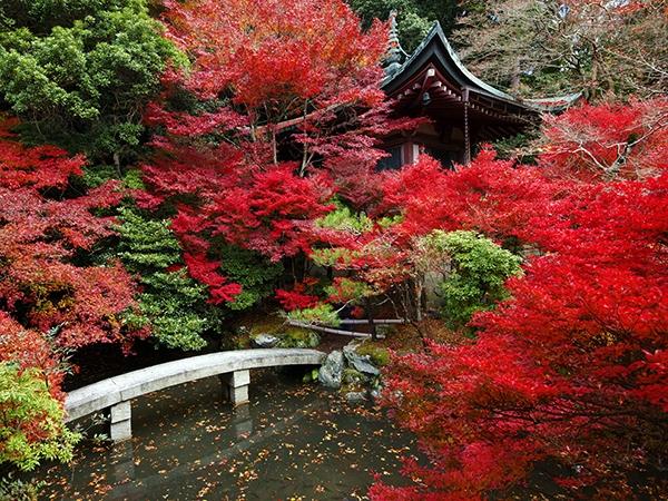 Những địa điểm du lịch nổi tiếng tháng 11