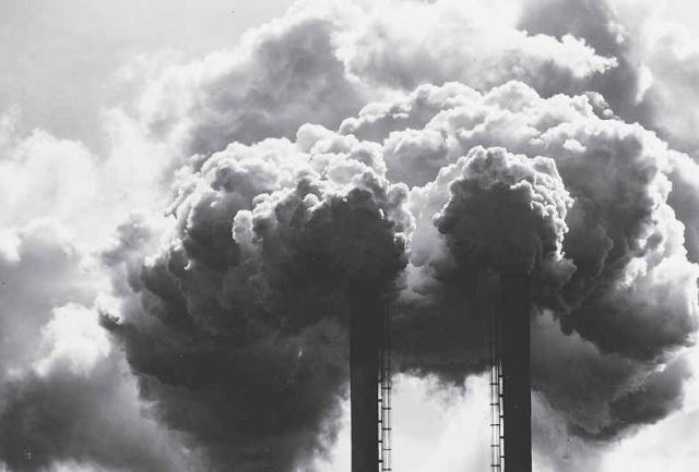 """Biện pháp chống tội phạm môi trường """"lách luật"""""""