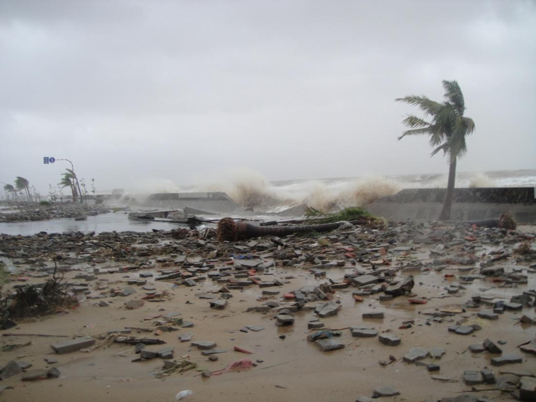 Thảm họa mà con người phải đối mặt từ biến đổi môi trường