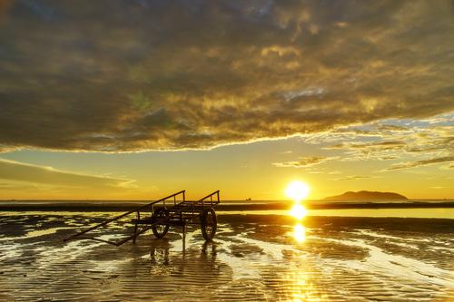 Biển Cửa Lò hấp dẫn diễn ra cuộc thi nhan sắc phố biển năm nay