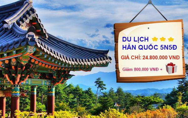 Book tour Hàn Quốc 5N5Đ chơi tết trước ngày 30/11, giảm giá 800.000 VNĐ/khách