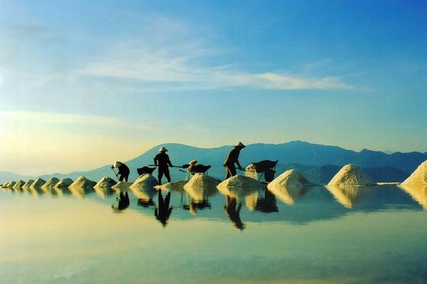 Lý do vì sao bạn nên chọn du lịch Ninh Thuận cho mùa hè này