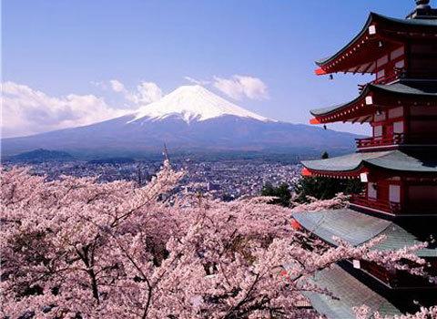 Các cách tặng hoa trong văn hóa Nhật Bản