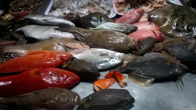 Quyến rũ của hải sản tươi ngon ở chợ đêm đảo Lý Sơn