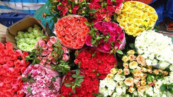 Tinh ý một xíu, chị em sẽ chọn được ngay hoa hồng đẹp, không ướp lạnh chơi suốt Tết