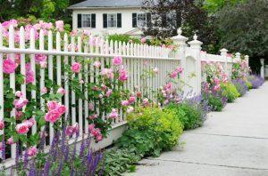 Bí quyết để có các mẫu rào chắn đẹp, dễ dàng