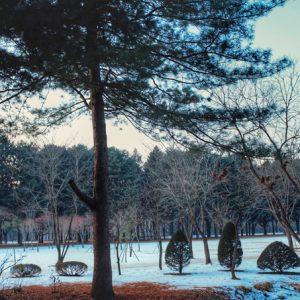 Xứ sở kim chi vào đông thật sự thu hút không kém mùa thu lá vàng