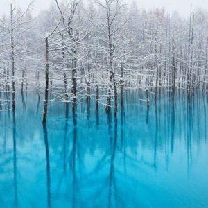 Những nơi ở Nhật đẹp nhất vào mùa đông