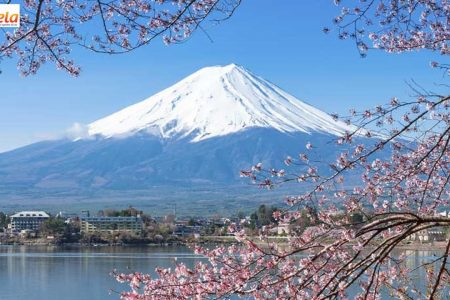 Tour du lịch tết 2019 Nhật Bản Núi Phú Sĩ Tokyo Yamanashi 4 Ngày 3 Đêm