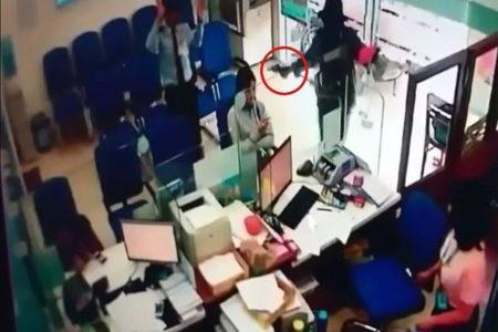 Chẳng lẽ nhân viên bảo vệ ngân hàng phải liều mạng với bọn cướp?