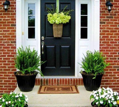 5 loại cây trồng trước cổng nhà đem may mắn, may mắn tài lộc vào ào ào