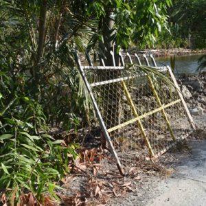 Thiếu sót quan tâm tại các cổng rào an ninh ở nông thôn