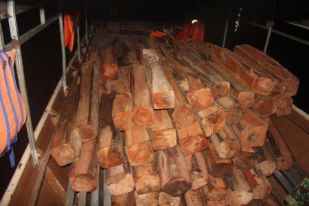 Tìm thấy bãi gỗ lớn nằm dưới lòng hồ Sê San