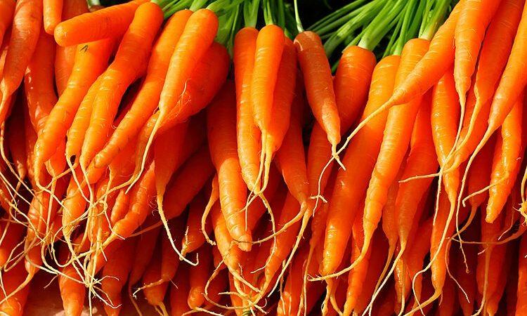 Rau củ quả màu cam cực tốt đối với phổi